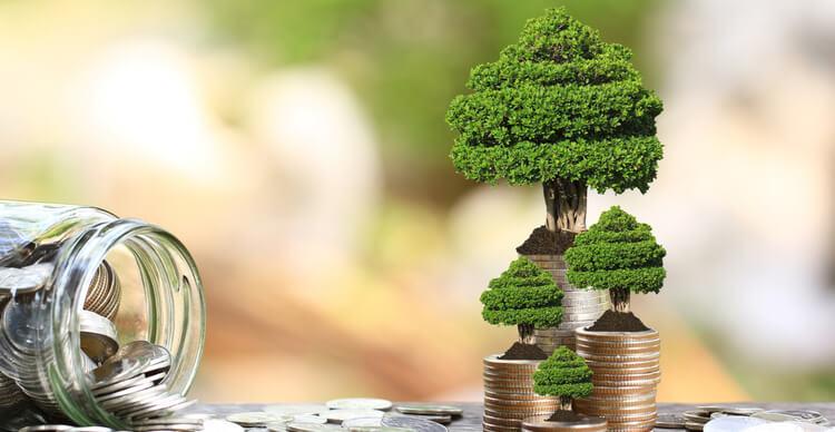 Faire pousser des arbres à monnaie pour représenter l'inflation